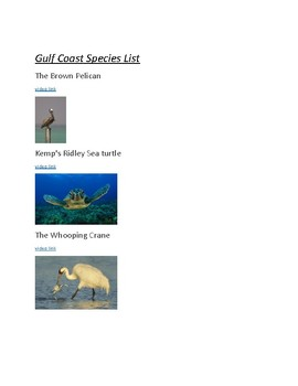 Gulf Coast Endangered Species project