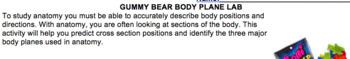 Gummy Bear Body Planes Lab