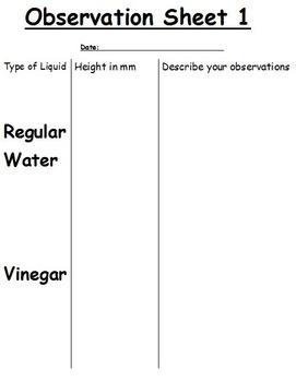 Gummy Bear Experiment! Grades 2 & up:Investigating Water, Vinegar, & Gummy Bears