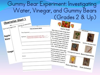 Gummy Bear Experiment! Grades 2 & up:Investigating Water,