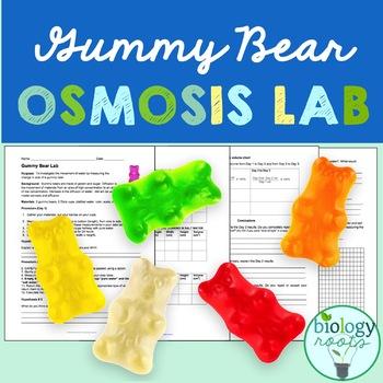 Gummy Bear Lab- Osmosis