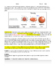 Gummy Bear Osmosis and Diffusion Lab Activity