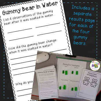 Candy Science:  Gummy Bear Science Experiment {Using the Scientific Method}