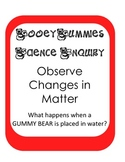 Gummy Bear Scientific Method Inquiry Experiment -explore changes in matter
