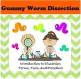 Gummy Worm Dissection Lab Activity