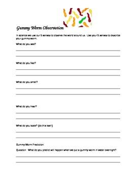 Gummy Worm Observation--5 senses