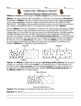Diffusion And Osmosis Worksheet Answers Worksheets For School ...