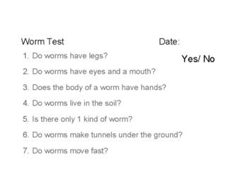 Gusano de tierra - Earthworm