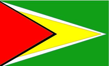 Guyana Flag-South America