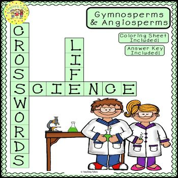 Gymnosperms Angiosperms Science Crossword Puzzle Coloring