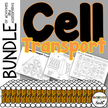 Cellular Transport Activities and Assessments Bundle