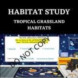 HABITAT STUDY- Tropical Grassland - STEM