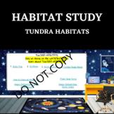 HABITAT STUDY- Tundra- STEM