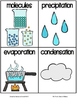 Fab Vocab {States of Matter} A Science Vocabulary Unit
