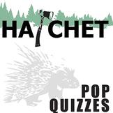 HATCHET 14 Pop Quizzes (Comprehension Exit Tickets) (by Gary Paulsen)