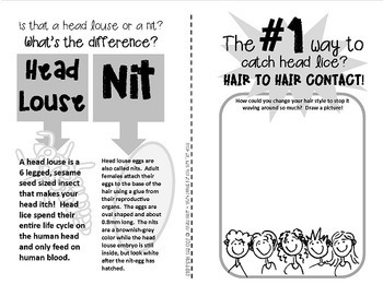 HEAD LICE! {An itchy booklet about nits, cooties and head lice}