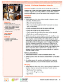 HEART Humane Education: Helping Homeless Animals (Grades 3-5 Activity 2)