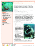 HEART Humane Education: Clean it Up (Grades 3-5 Activity 3)