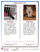 HEART Humane Education: It's Raining Cats and Dogs (Grades 3-5)