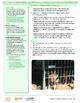 HEART Humane Education: Puppy Mills: Exposed (Gr. 6-8, Act