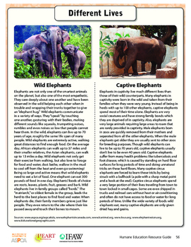 HEART Humane Education: Animals: It's Their World Too (Grades 3-5 Lesson 1)