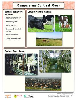 HEART Humane Education: Friends on the Farm (Grades 3-5 Lesson 5)