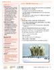 HEART Humane Education: Wildlife Under Fire (Grades 3-5 Lesson 6)