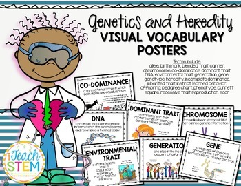 STEM Visual Vocabulary Cards - Heredity and Genetic Traits