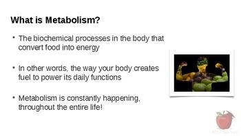 HFA4U - Understanding Metabolism