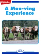 A Moo-ving Experience