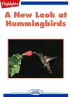 A New Look at Hummingbirds