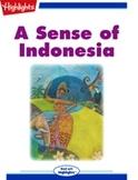 A Sense of Indonesia