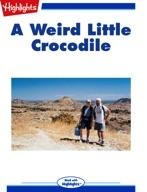 A Weird Little Crocodile