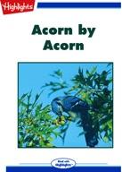 Acorn by Acorn
