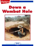 Down a Wombat Hole