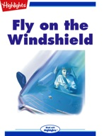 Fly on the Windshield