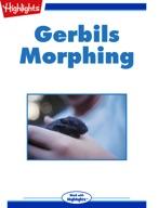 Gerbils Morphing