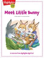 Meet Little Bunny