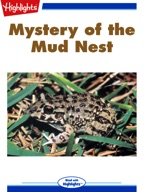 Mystery of the Mud Nest