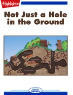 Not Just a Hole in the Ground