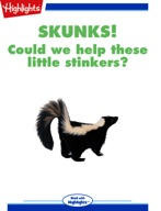 Skunks! Could we help these little stinkers?
