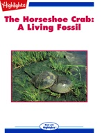 The Horseshoe Crab: A Living Fossil