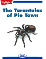 The Tarantulas of Pie Town