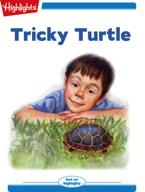 Tricky Turtle