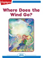 Where Does the Wind Go?