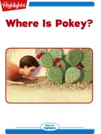 Where Is Pokey?