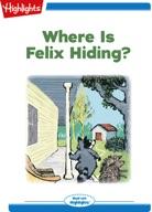Where is Felix Hiding?