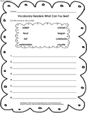 HM 1st Grade Vocab Reader What Can You See ABC Order
