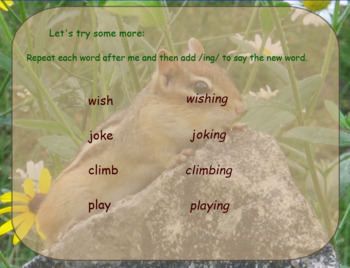 HMH 2017 National Journeys 2nd Grade Lesson 9  How Chipmunk Got His Stripes