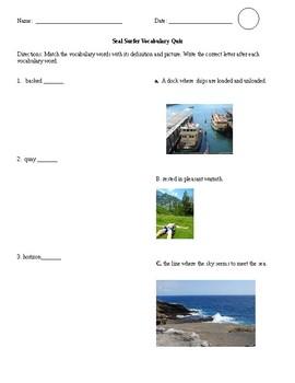 HMH 3rd Grade Reading Vocabulary Test- Seal Surfer
